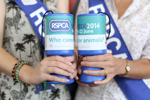 RSPCA East Berkshire - how to help box