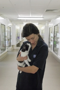 RSPCA East Berks - Lady With Cat